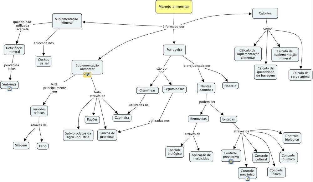 Usando mapas conceituais para entendimento das regras de negócio