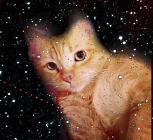 Zuri in space!