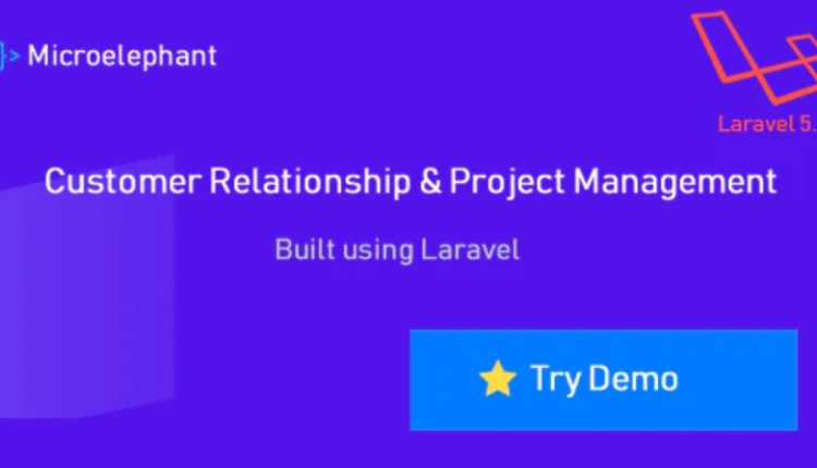 Microelephant CRM and Project Management System Script