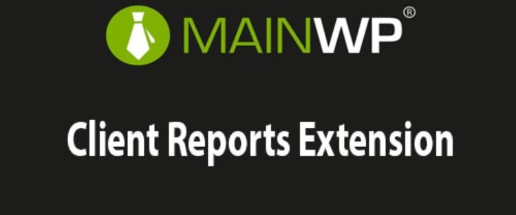 Client Reports Extension plugin