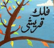 Falak Qureshi