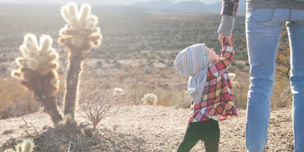 dear kid motherhood tash mcgill