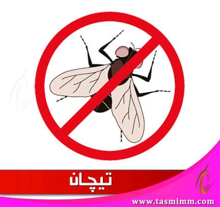 حلول بسيطة للتخلص من حشرات الذباب في فصل الصيف بأقل التكاليف