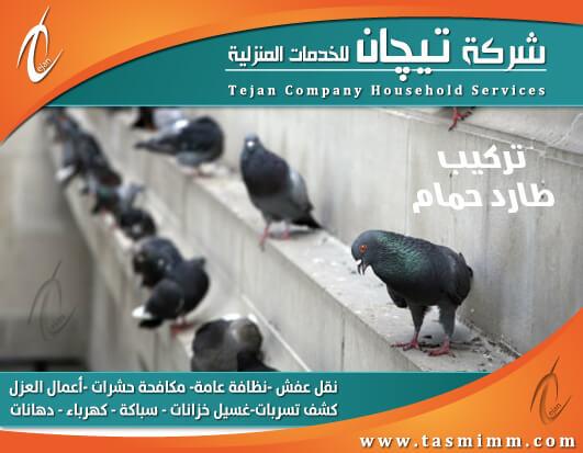 شركة تركيب طارد الحمام بالمدينة المنورة وافضل شركة لمكافحة الحمام من البيوت