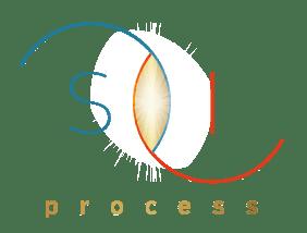 S I Process