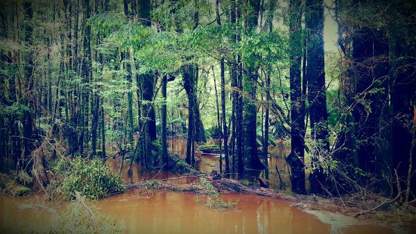 20161001 143302 - The Hydro Trail