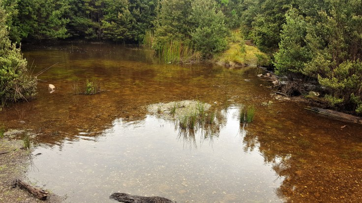 arthur-river-dam