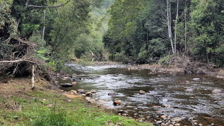 inglis-river-camping-area-2