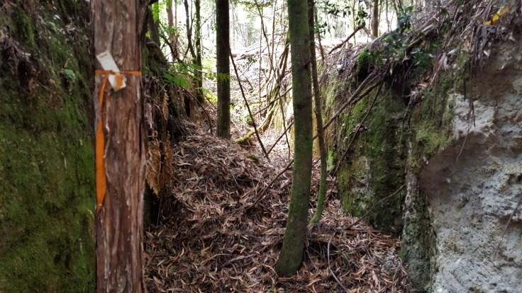 Folly Hill Mine