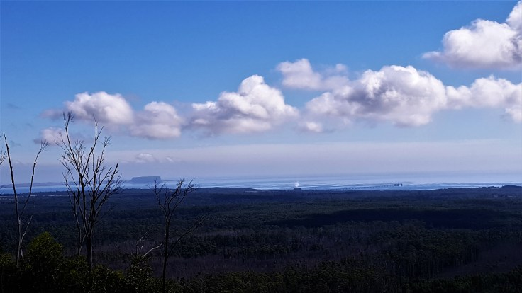 Myhill Lookout 1