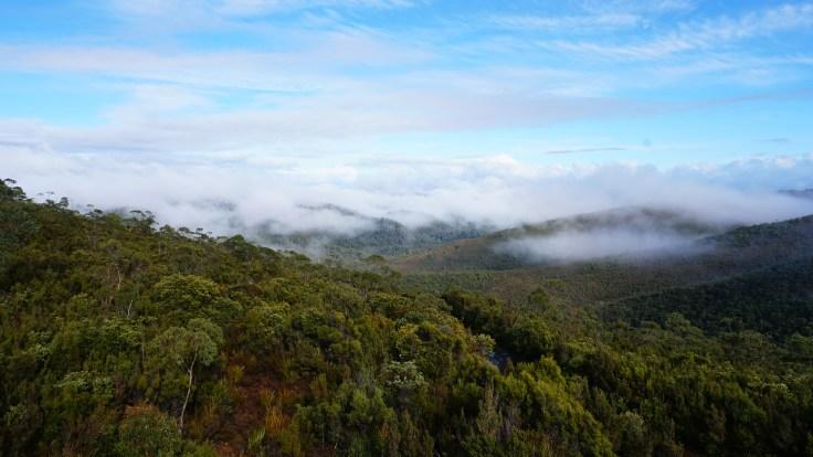 View from Brassey.JPG