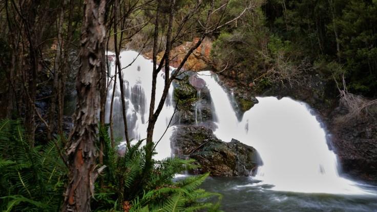 Ringtail Falls.JPG
