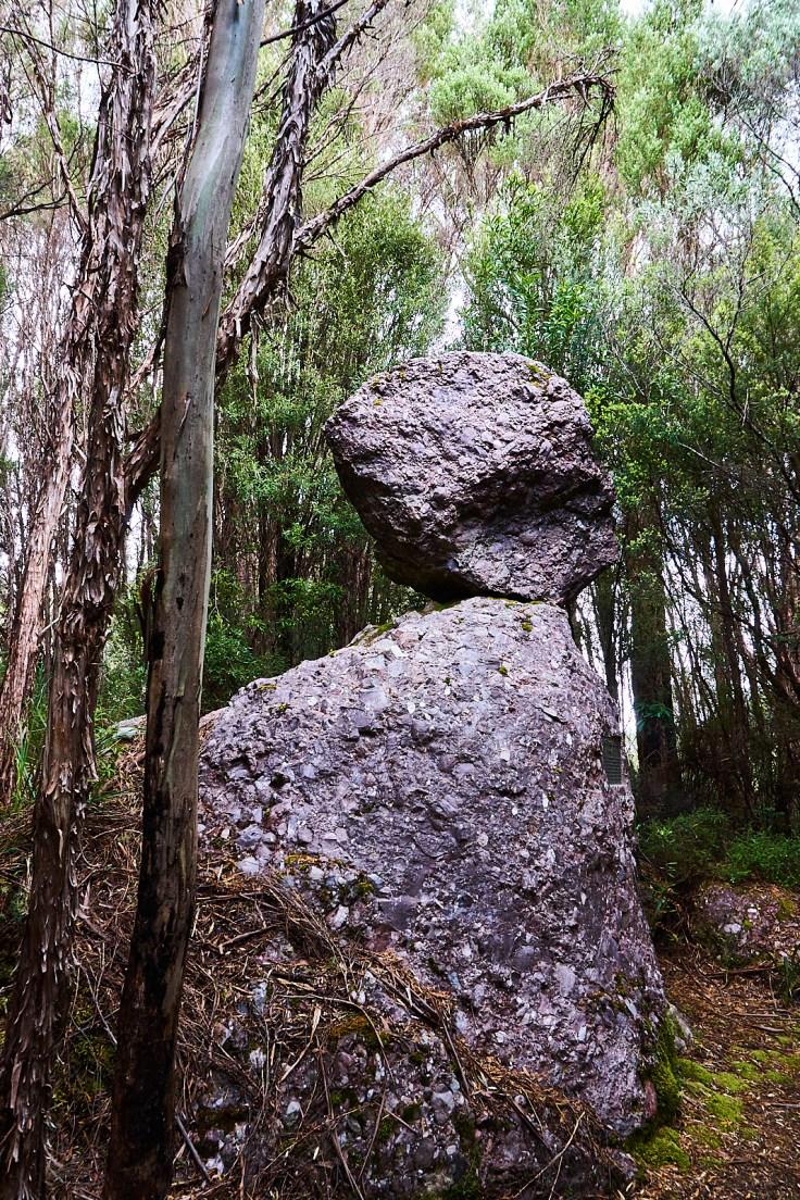 Clonglomerate Rock 1