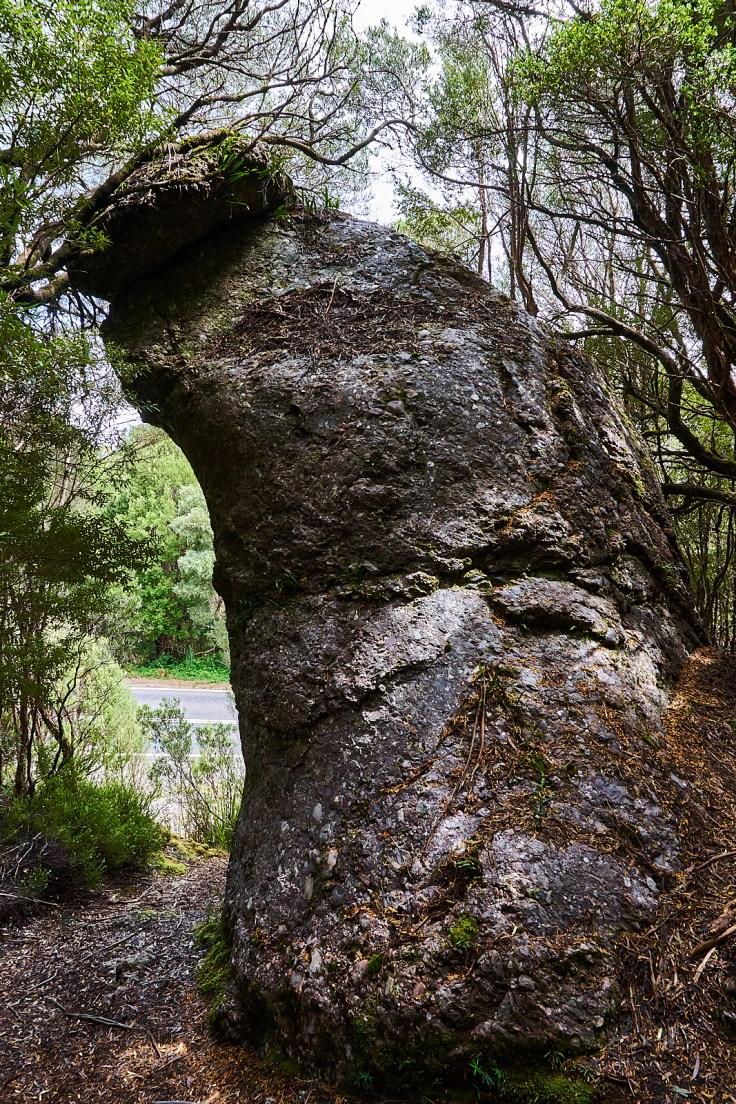 Clonglomerate Rock
