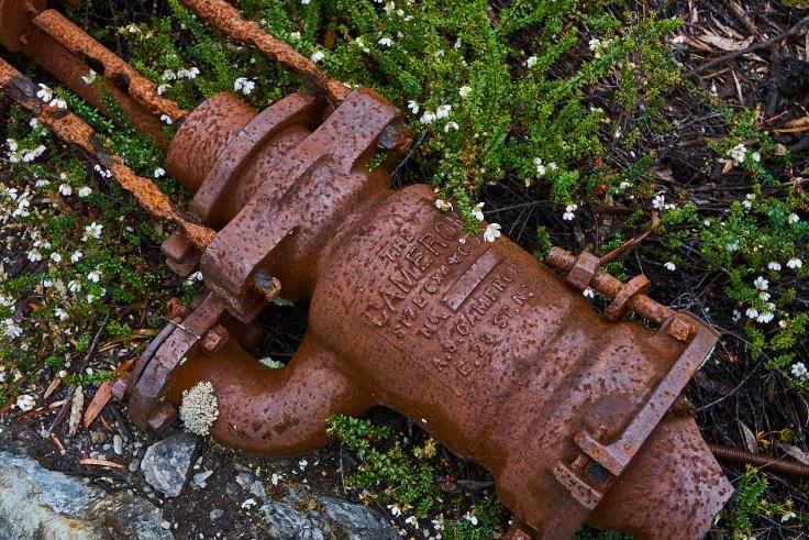 Steam Something valve