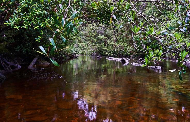 Castray River.jpg