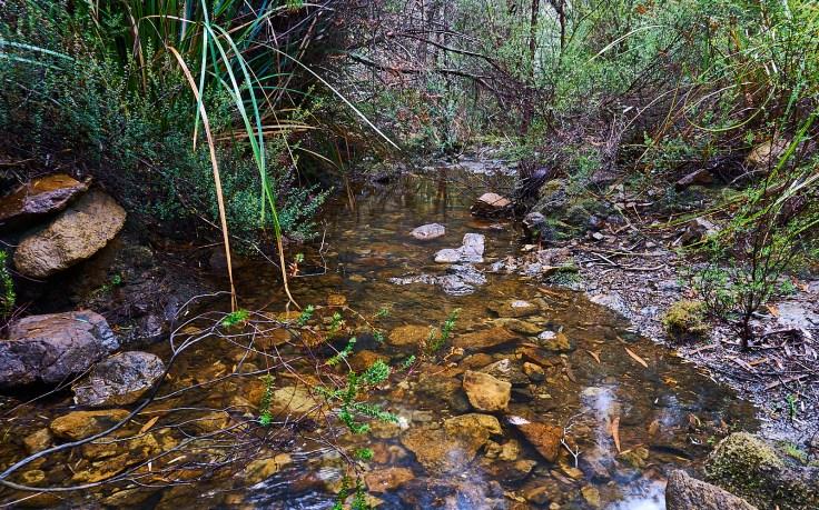 Stewart Creek