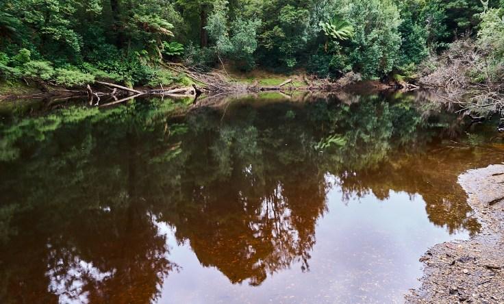 Dead Calm Whyte River
