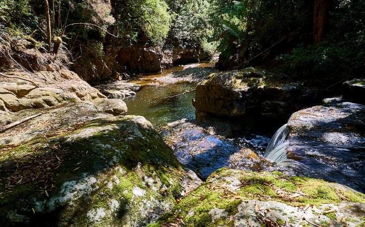 Flowerdale River gorge from top of falls 1