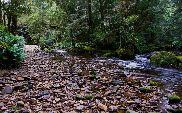 Nora-Bird River Junction 1