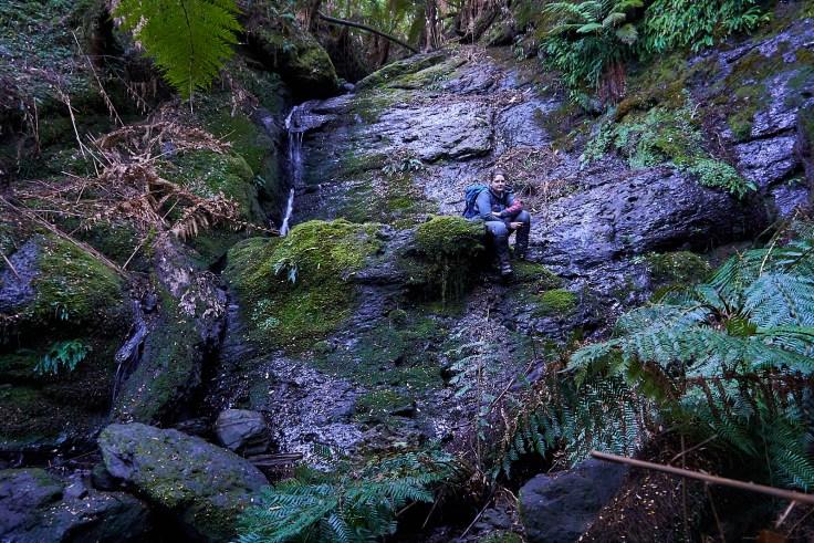 Campbells Rivulet Falls 3