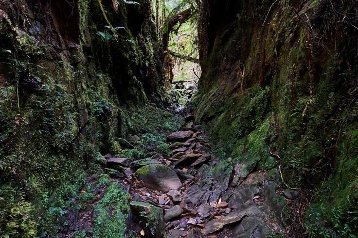Creek Diversion