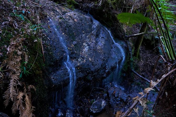Top Tier of Campbell Rivulet Falls 1