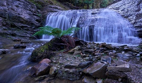 Fern Falls 2 1 - Meunna area.