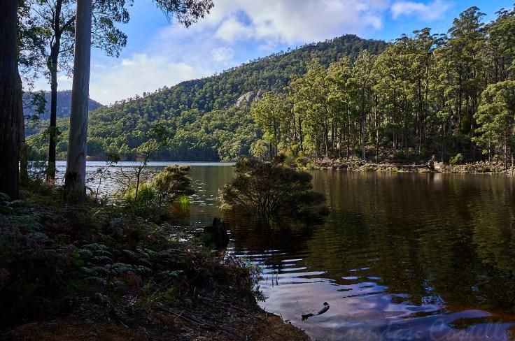 Lake Cethana 1