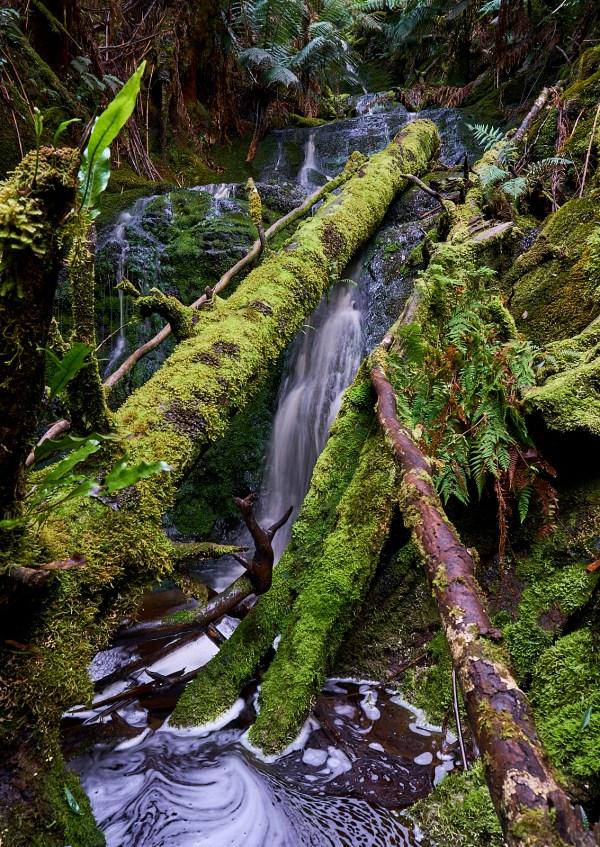 Mt Donaldson Falls 1 1 - Mt Donaldson.