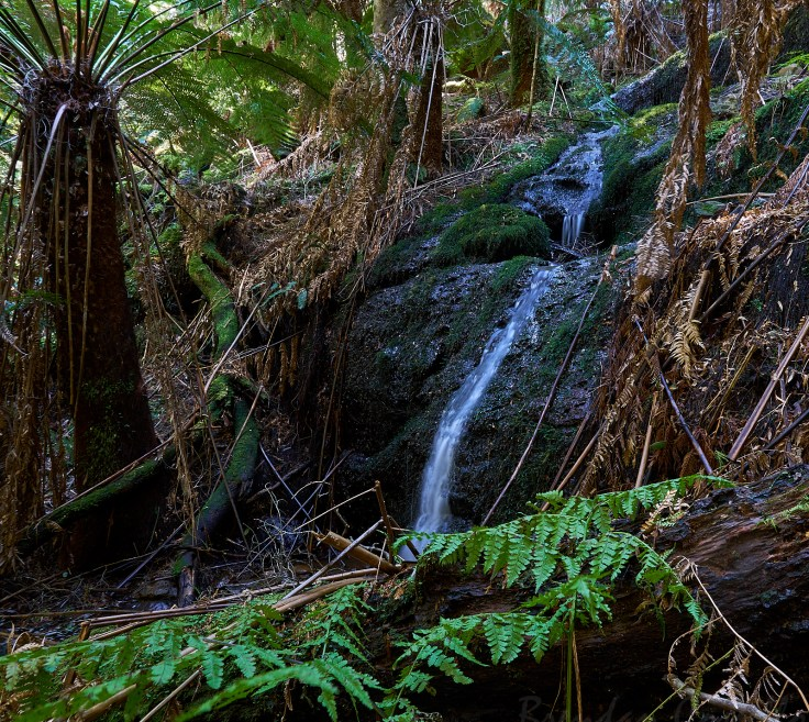 First waterfall 1 1.jpg
