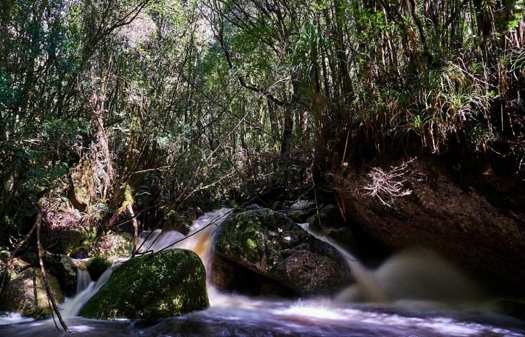 Pandani Cascade 1