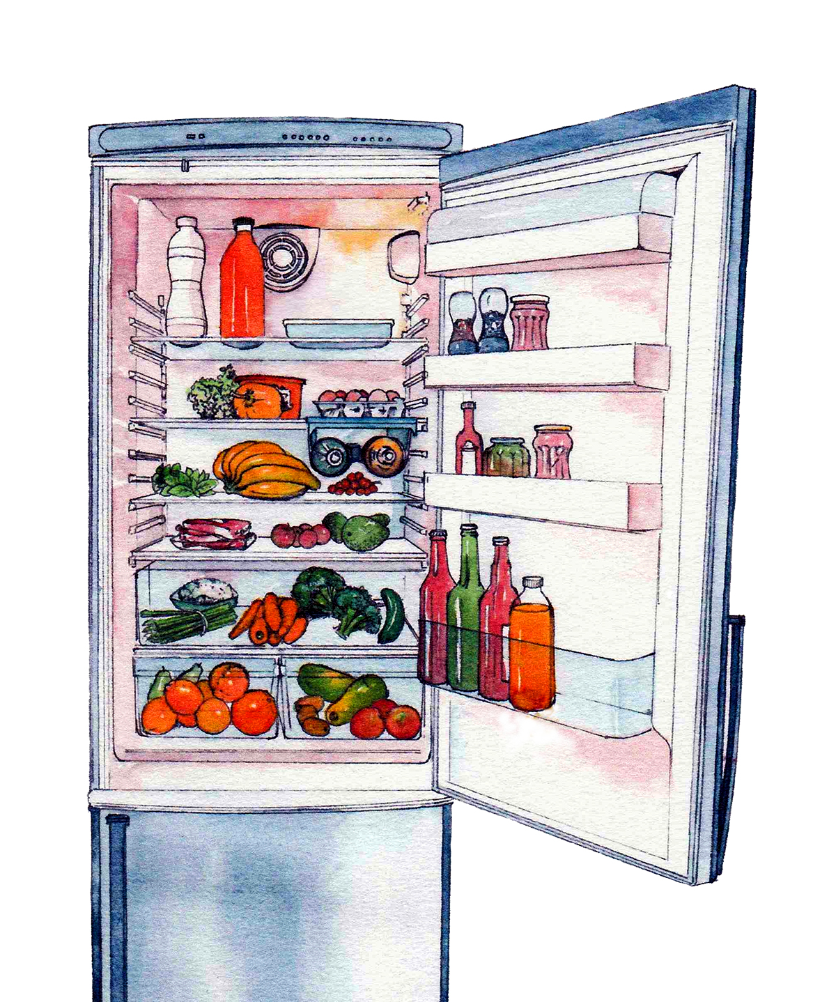Where To Store What In Your Fridge