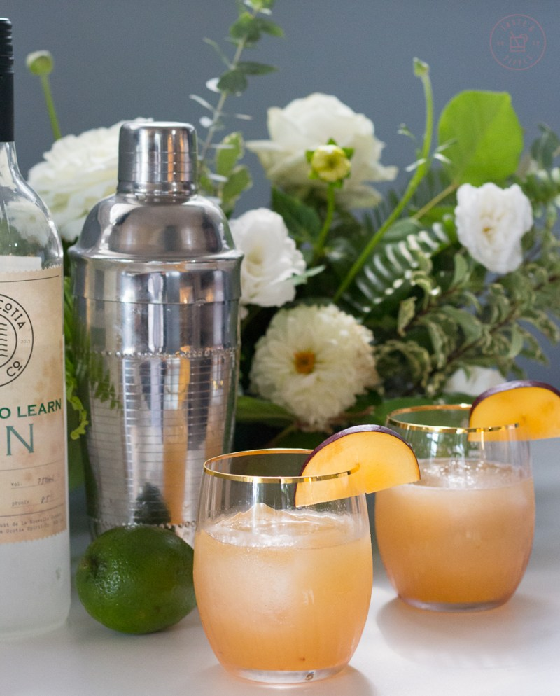 Plum and Fennel Gin Gimlet   Taste and TIpple