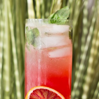 Blood Orange Mojito | Taste and Tipple