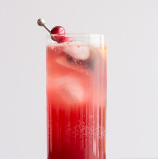 Cranberry Gin Fizz | Taste and Tipple