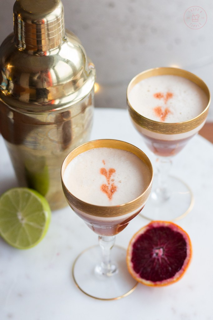 Blood Orange Mezcal Sour | Taste and Tipple