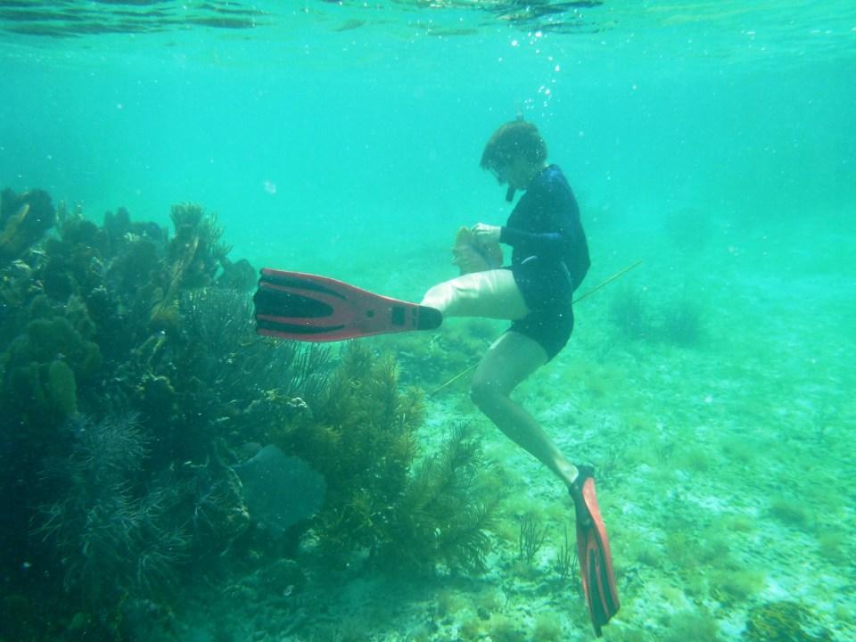 Lyra free diving