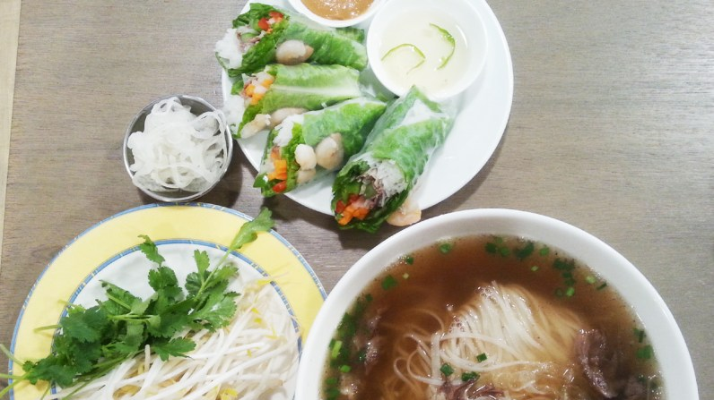 Fresh Spring Rolls and Well-done Beef Brisket Pho at Pho for You