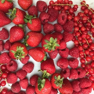 Summer Pudding recipe