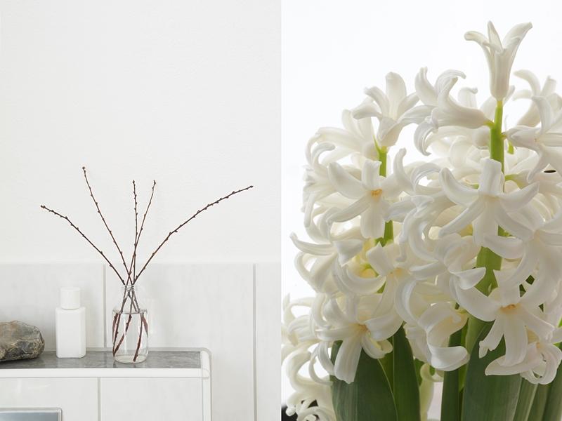 Mandelzweige in Glasflasche als schlichte Frühlingsdeko im Bad und weiße Hyazinthe als Tischdeko. Tasteboykott Wohnblog.