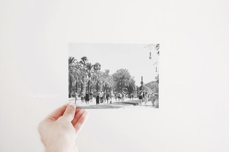 Favoriten im Juni: Fotos in schwarz-weiß drucken lassen. Tasteboykott.