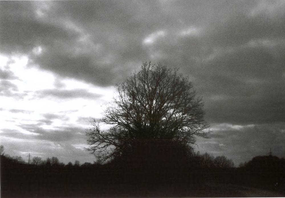 Vor meiner Linse - analoge Fotografie: Schnappschüsse in schwarz-weiß.
