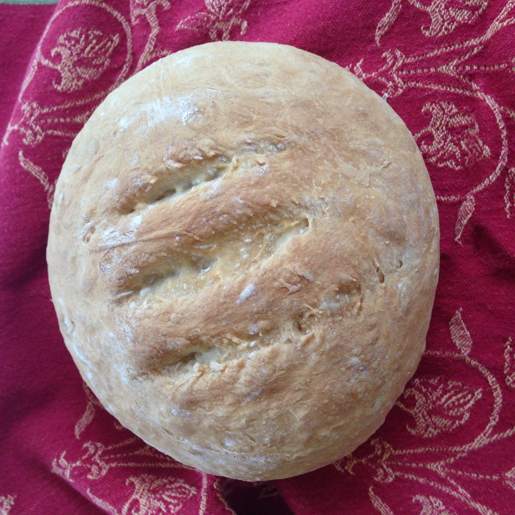Finished loaf of Easy No Knead Homemade Bread