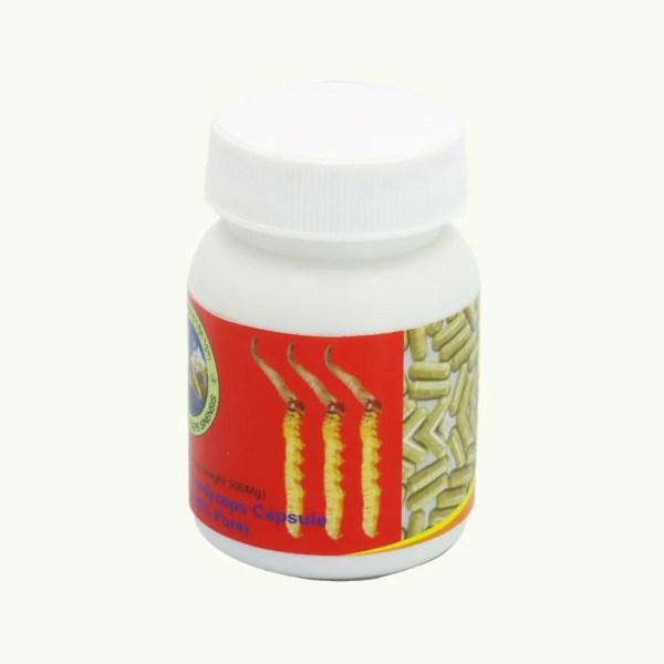 Bhutan Cordyceps Sinensis Cordyceps capsules 3