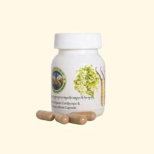 Cordyceps & mistletoe capsules 2