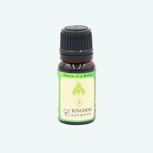 Caraway Essential Oil by Kingdom Essences 1