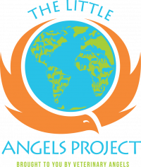 LITTLE_ANGELS_PROJECT
