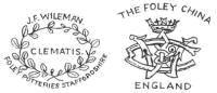 Shelley teacup logo