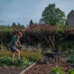 Helmsley Walled Garden © Polly Baldwin